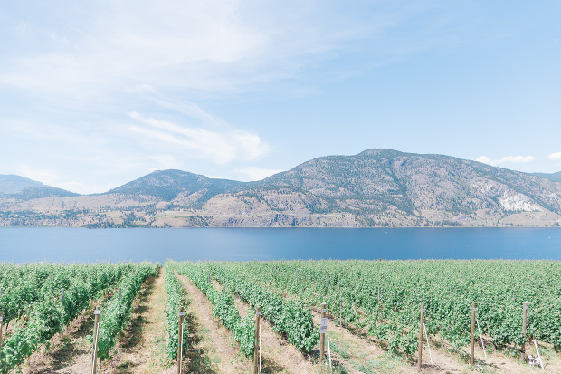Okanagan wedding photographer, Blush Sky Photography, Painted Rock Winery wedding, God